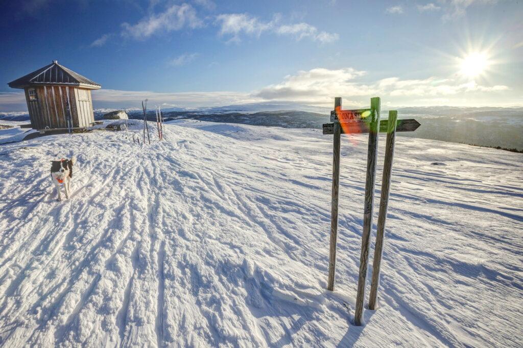Cross Country Skiing Langren