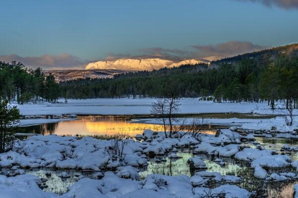 Wilderness Lavvo