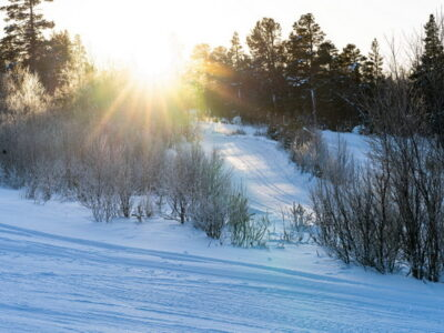 Daily groomed slopes i Norway - alpine skiing destination in Norway